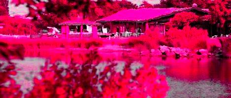 Le Parc naturel du Teich, un espace naturel