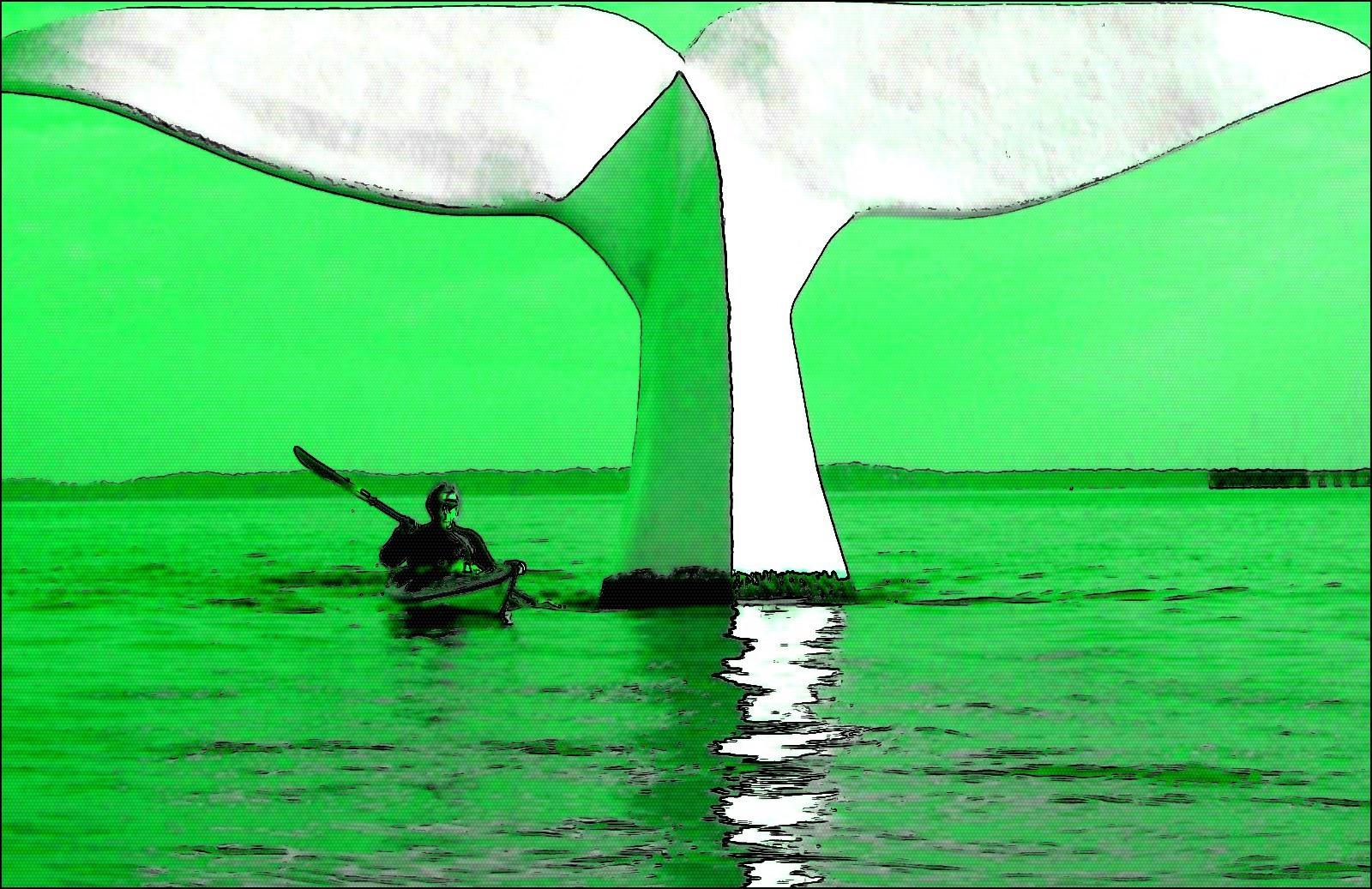 Les Balades en Kayak sur le Bassin d'Arcachon